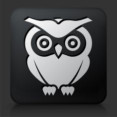 Black Square Button with Owl vector art illustration