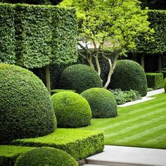 4 Blindsiding Tips: Modern Garden Landscaping Architecture cactus garden landscaping window.Garden Landscaping With Stones House front garden landscaping shape. Boxwood Garden, Garden Hedges, Topiary Garden, Garden Landscape Design, Landscape Architecture, Formal Gardens, Outdoor Gardens, Contemporary Garden, Contemporary Stairs