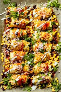 Zucchini Chicken Enchiladas made in a sheet pan and zucchini instead of tortillas. Zucchini Chicken Enchiladas made in a sheet pan and zucchini instead of tortillas. Healthy Chicken Recipes, Healthy Dinner Recipes, Mexican Food Recipes, Vegetarian Recipes, Cooking Recipes, Zucchini Dinner Recipes, Healthy Mexican Food, Light Chicken Recipes, Protein Veggie Meals