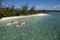 favorite place in the bahamas: andros island.