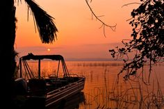 Kosi Forest Lodge | Specials 4 Africa
