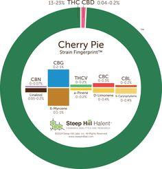 Cherry Pie Strain Information - Leafly