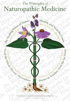medical health naturopathy The council on naturopathic medical  look beyond surface symptoms to determine the underlying causes of illness and provide natural approaches for restoring health.