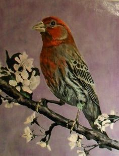 My first bird painting