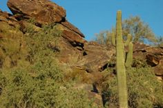 South Mountain Park, the largest municipal park in the world, is a popular hiking, biking and horseback riding trail area.