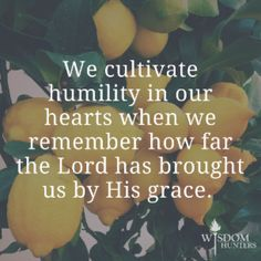 """""""Humility must be really important if God gives grace to the humble! Scripture Quotes, Bible Scriptures, Words Quotes, Sayings, Humble Quotes Bible, Quotes Quotes, Qoutes, Humility Bible, Humility Quotes"""