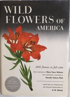Wild Flowers Of America Rickett 400 Color Illustrations by Walcott and Platt