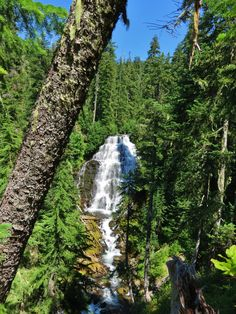 Duncan Falls in Three Sisters Wilderness, Oregon