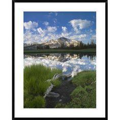 Global Gallery Mammoth Peak Reflected in Seasonal Pool, Yosemite Np, California by Tim Fitzharris Framed Photographic Print Size:
