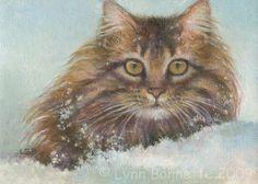 Lynn Bonnette