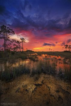 A sunset over the flooded rocky pinelands of the Everglades National Park, Florida | Paul Marcellini on 500px