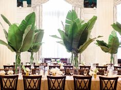 modern wedding inspiration - photo by Ashley Slater Photography http://ruffledblog.com/hollywood-glam-wedding-with-an-unexpected-tropical-twist