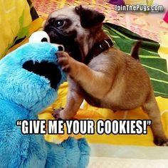 9786ea6b8479 14 best funny images on Pinterest