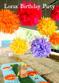The Lorax Birthday Party at Tanaka Farms