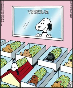 Snoopy looking in the nursery. Snoopy looking in the nursery. Baby Snoopy, Snoopy Love, Snoopy Et Woodstock, Charlie Brown Und Snoopy, Snoopy Nursery, Puppy Nursery, Peanuts Snoopy, Peanuts Cartoon, Funny Animals