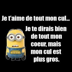 #humour #du #soir #bonsoir #minions #moimocheetmechant #joke #jairigoletouteseule #maisjelevisbien Sur ... Tu Me Manques, Lol, French Quotes, Good Humor, Sexy Cartoons, Minions Quotes, Amazing Quotes, Sarcasm, Funny Jokes