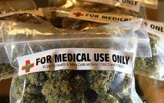 bolsas-marihuana-medicinal-en-california_590x395-590x372