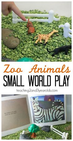 Zoo sensory bin for toddlers and preschoolers, inspired by the book Zoo-Looking - Teaching 2 and 3 Year Olds
