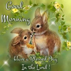 Good Morning Have A Blessed Day In The Lord morning good morning morning quotes easter quotes good morning quotes Good Morning Bible Quotes, Good Day Quotes, New Quotes, Inspirational Quotes, Good Morning Dear Friend, Good Morning Good Night, Good Morning In Spanish, Happy Easter Quotes, Pictures Of Christ