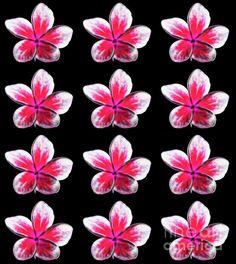 Pink and White frangipant repeating tropical pattern. Tropical Pattern, Summer Flowers, Repeating Patterns, Art Designs, Fine Art America, Digital Art, Wall Art, Happy, Artwork
