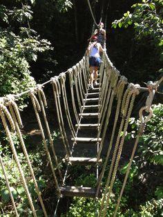 Campo Rico Ziplining (Puerto Rico)  #GOGOPRWeek