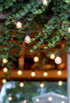 Outdoor Lights String An Entry From Good Grief Miss Agnes  Light Bulb Bulbs And Lights