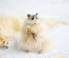 Little beige hamster. This little toy will be a good gift, or to decorate your living room. Hamster hand-knitted from high-quality mohair yarn.