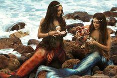 Little Mermaid Erg Mooie 04178 Fantasy Mermaids, Real Mermaids, Mermaids And Mermen, Mermaid Pose, Mermaid Pictures, Project Mermaid, Realistic Mermaid Tails, Mermaid Island, Mermaid Drawings