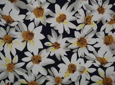 Cotton dress fabric with stretch