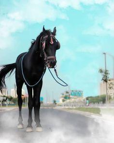 Horse Background, Blur Image Background, Background Wallpaper For Photoshop, Blur Background Photography, Photo Background Images Hd, Studio Background Images, Editing Background, Picsart Background, Best Hd Background