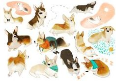 references-dogs51