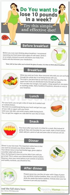 military diet for 3 days, how to reduce fat easily, how much calories i need to lose weight, slimming world free foods 2017, lose weight very quickly, low glycemic load meals, fat loss meals, weight loss wellness center, high protein low carb eating plan, workout for weight loss at gym, eating fruits all day lose weight, how to decrease weight at home, slimming world lunches to go, what should blood type a eat, suggested weight for height, weight loss before and after motivation