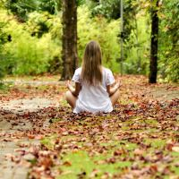 Pourquoi vivre en forêt? #foret #arbres #tree #oxygène #lifestyle #bienfaits #santé #nature #vivreautrement #bienêtre #bonheur #happy #relax #wood #printemps #nature #stress #fleurs #healing #guerison #vivre #life #maison #cerveau
