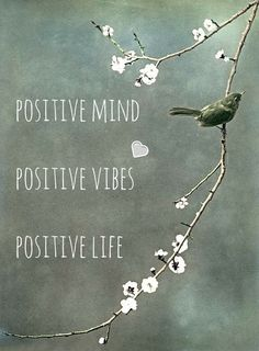 Positive mind, positive vibes, positive life! Click on this image to see the biggest selection of life tips and positive quotes!