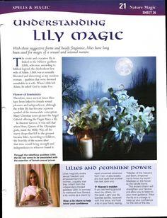 Understanding Lily Magick