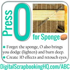 Type O for Sponge in PSE. Find out how to use it today! http://www.digitalscrapbookinghq.com/?p=10455