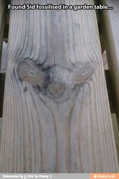 Omg lol--you see these on v-groove pine walls!!!