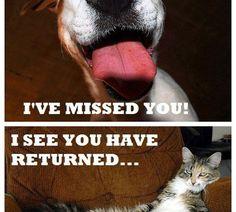 I see you have returned...