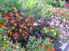 Russ' landscaping and gardening tips - he is from utah- would be smart to keep checking this site out!