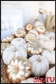 Gold and ivory mini pumpkins. gold and ivory mini pumpkins white pumpkins wedding, pumpkin wedding decorations, fall pumpkin wedding Mod Wedding, Trendy Wedding, Dream Wedding, Wedding Simple, Decor Wedding, Wedding Ceremony, Wedding White, Autum Wedding, Elegant Wedding