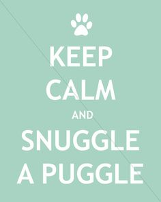Keep Calm and Snuggle a Puggle by JulsNewbrough on Etsy, $9.50