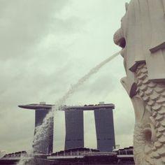 シンガポール公演:Vo.ゴッチの日記