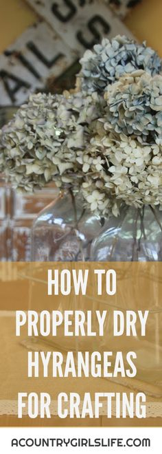 How to Dry Hydrangeas and Make a Dried Hydrangea Wreath Want to know how to properly dry hydrangea flowers so they aren't brittle? Looking for year round, front door wreath inspiration or ideas? Take a look at our DIY dried hydrangea flower wreath! Dried Flower Wreaths, Hydrangea Wreath, Hydrangea Flower, Dried Flowers, Hydrangea Care, Cut Flowers, Hortensien Arrangements, Dried Flower Arrangements, Hortensia Hydrangea