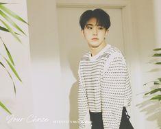 Seventeen Album, Hoshi Seventeen, Choi Hansol, Won Woo, Pledis 17, Pledis Entertainment, Mini Albums, Hiphop, Random