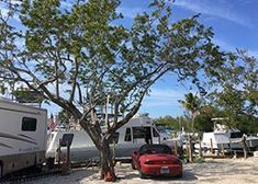RV Park Florida Campgrounds, Florida Camping, Rv Parks, Recreational Vehicles, Mobile Home Parks, Camper, Campers, Single Wide