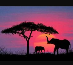 painting Ideas Elephant - Silhouette of Elephants and Tree. African Animals, African Art, African Safari, African Elephant, African Beauty, Art Sur Toile, Elephant Silhouette, African Sunset, Silhouette Painting