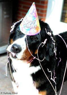 Ren had a good Birthday!