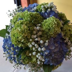 Wedding bouquet of green and blue hydrangea with baby's breath. www.doristhefloristt.com