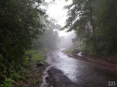 En route to Khodala, a small hill station near Mumbai. Ordinarily, there's not much to see there. But come monsoon, and the place comes alive with its natural beauty