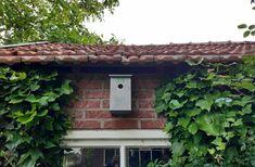 Thuus vogelhuisje in de regio Outdoor Structures